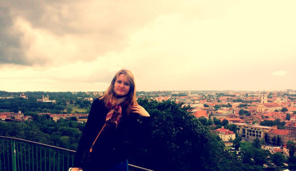 The panorama of Vilnius