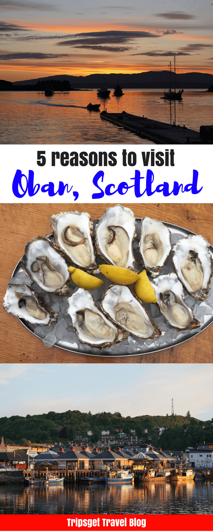 5 reasons to visit Oban, Scotland. Edinburgh to Oban. Best Seafood in Scotland, best oysters in the UK, nightlife in the UK, cruise to the isle of Mull, see puffins, Oban distillery