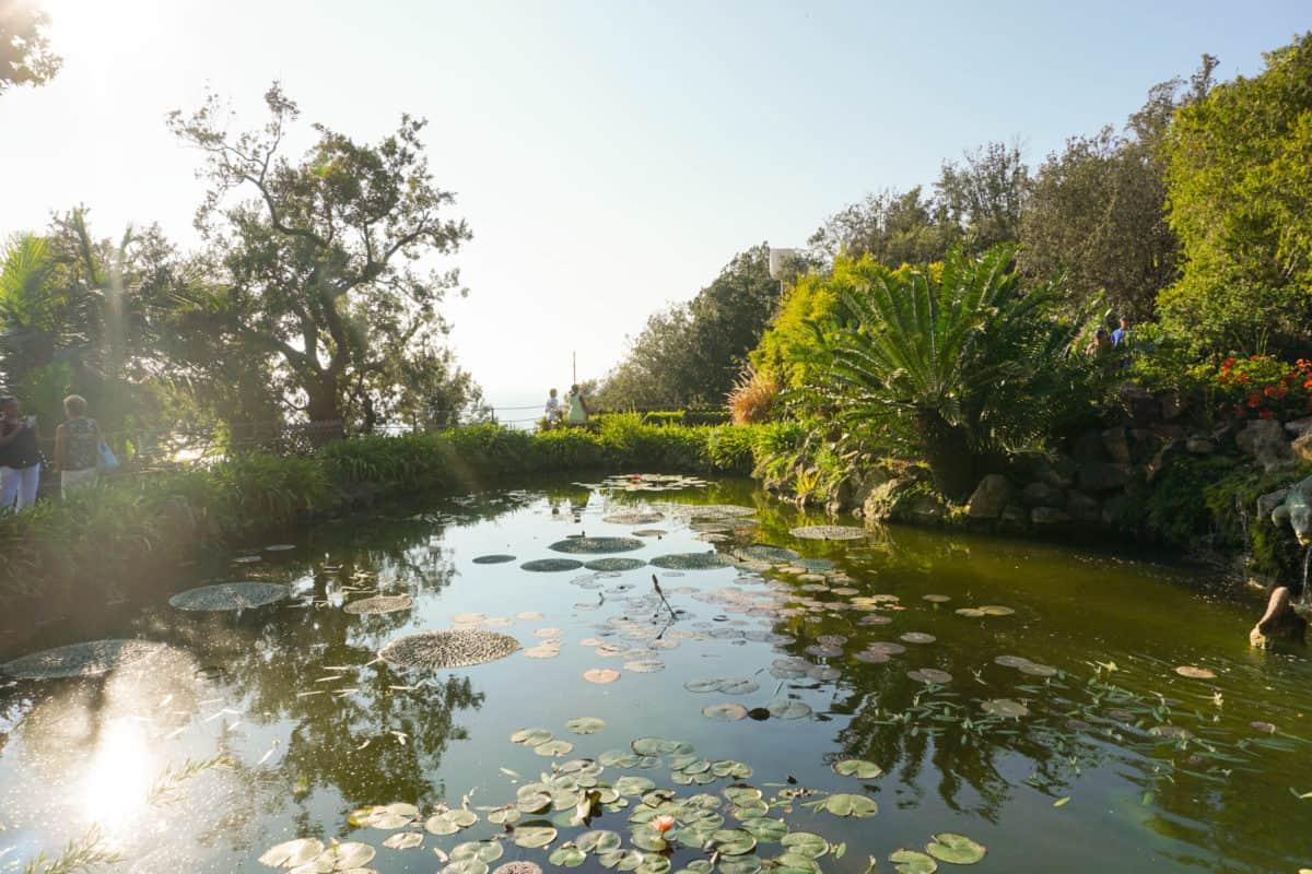 Gardens in Ischia