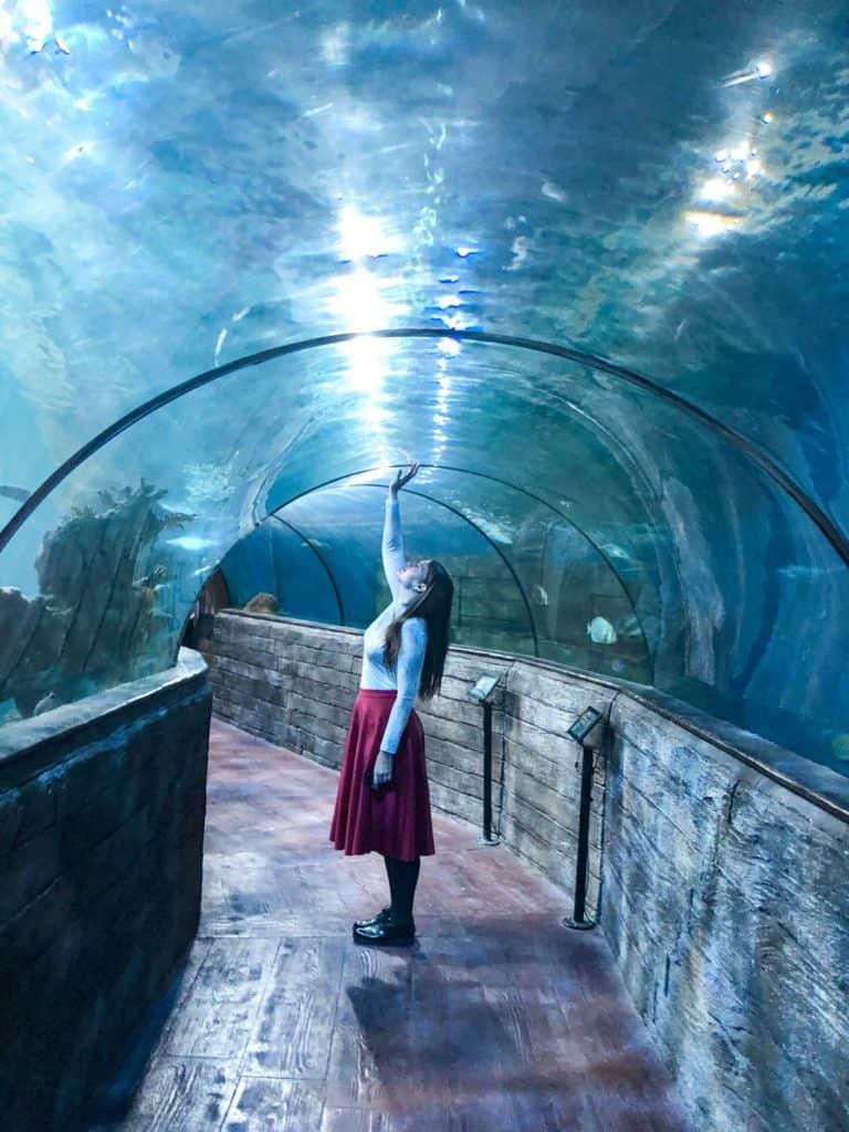 Malta Aquarium