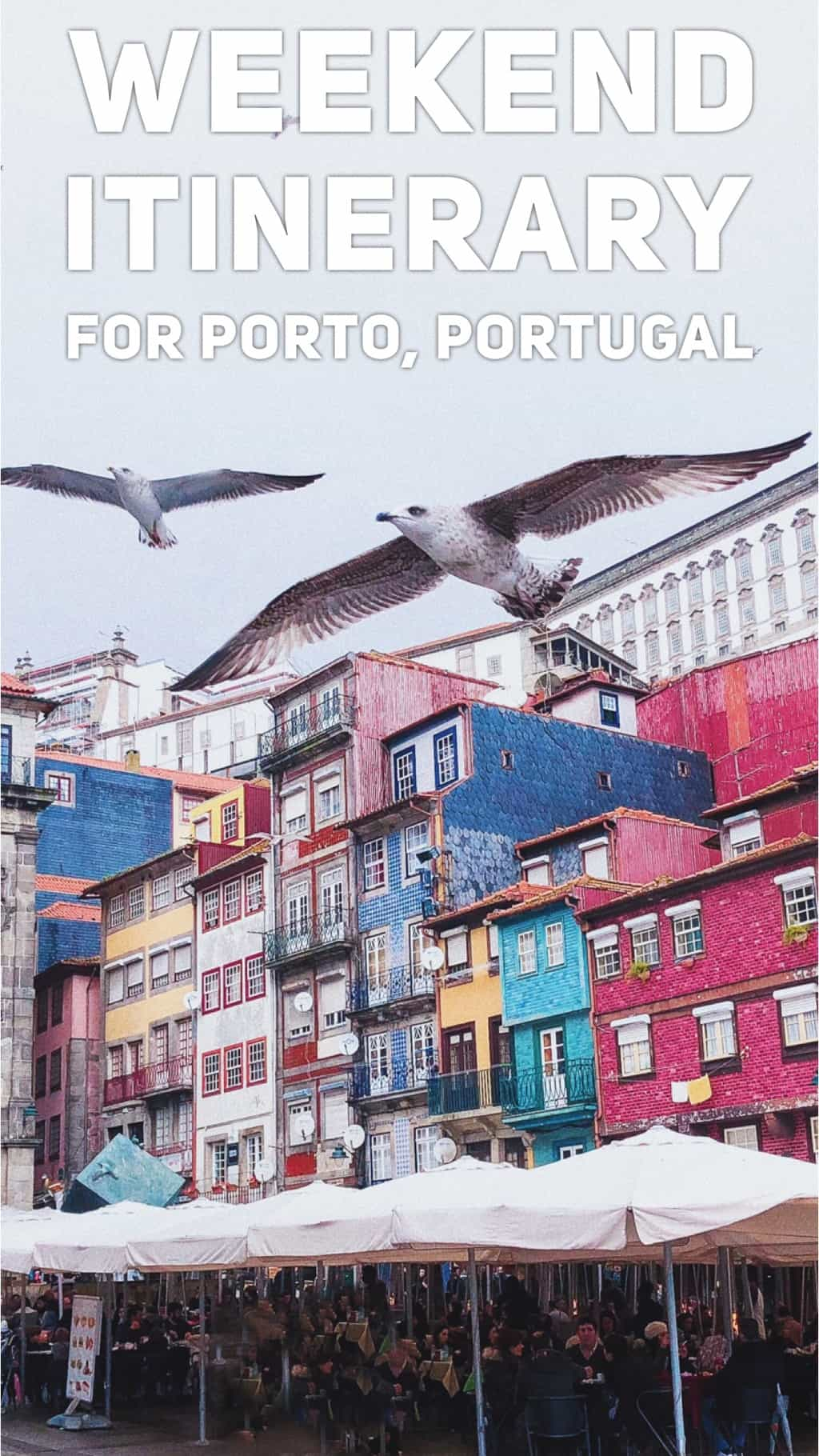 Weekend in Porto: seafood, port and the best Instagrammable spots