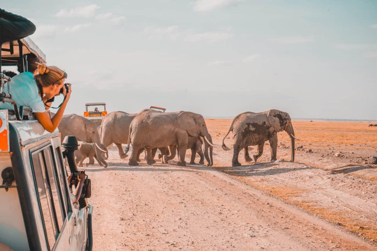 Amboseli NP Kenya