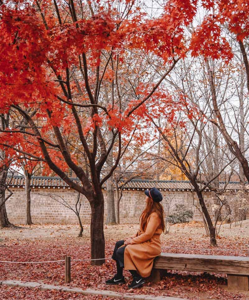 Best things to do during a layover in Seoul, South Korea