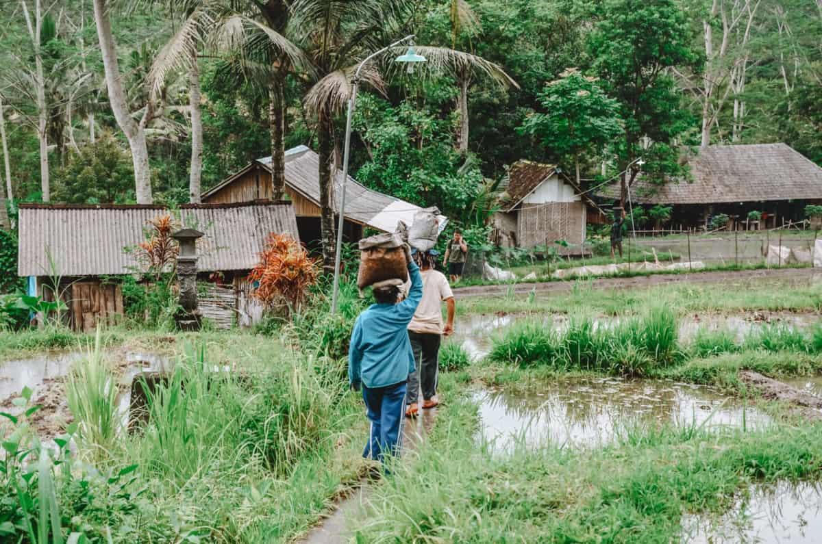Bali in December