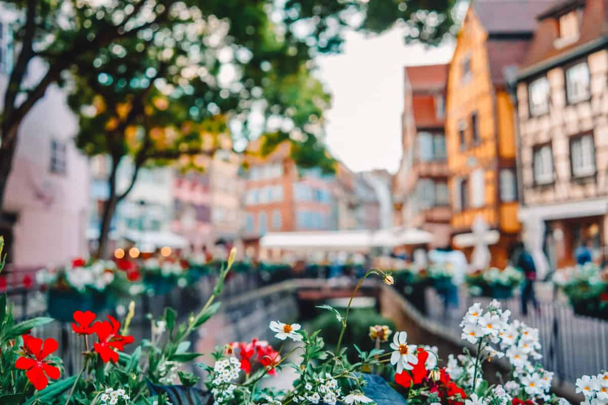 the most beautiful city in France (Alsace)