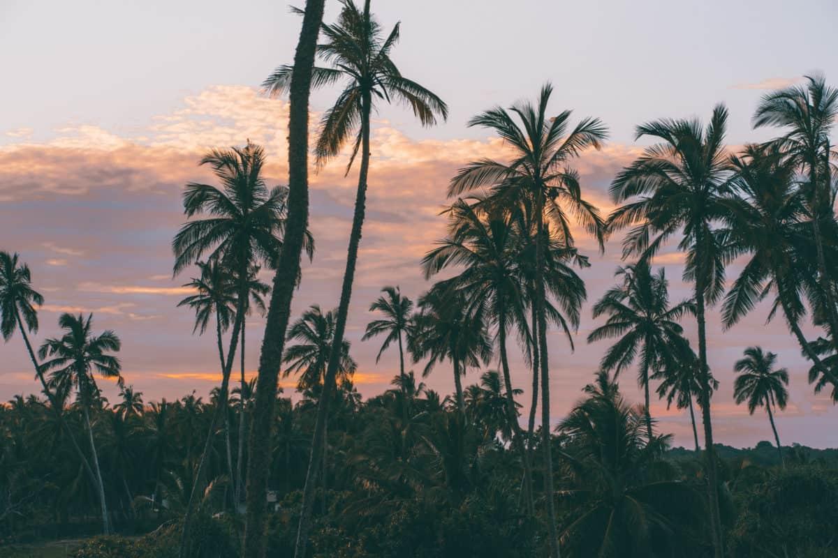 Is Sri Lanka worth it for a luxury trip?