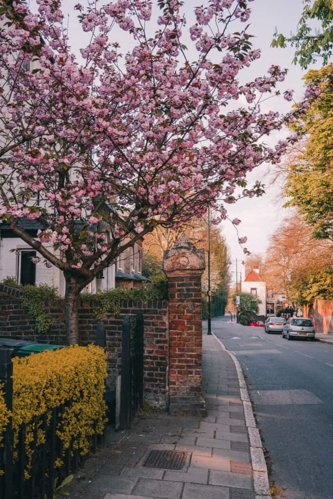 Best things to do in Highgate, North London