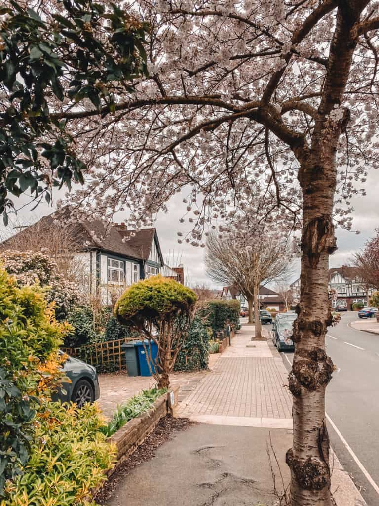 East Finchley best things to do