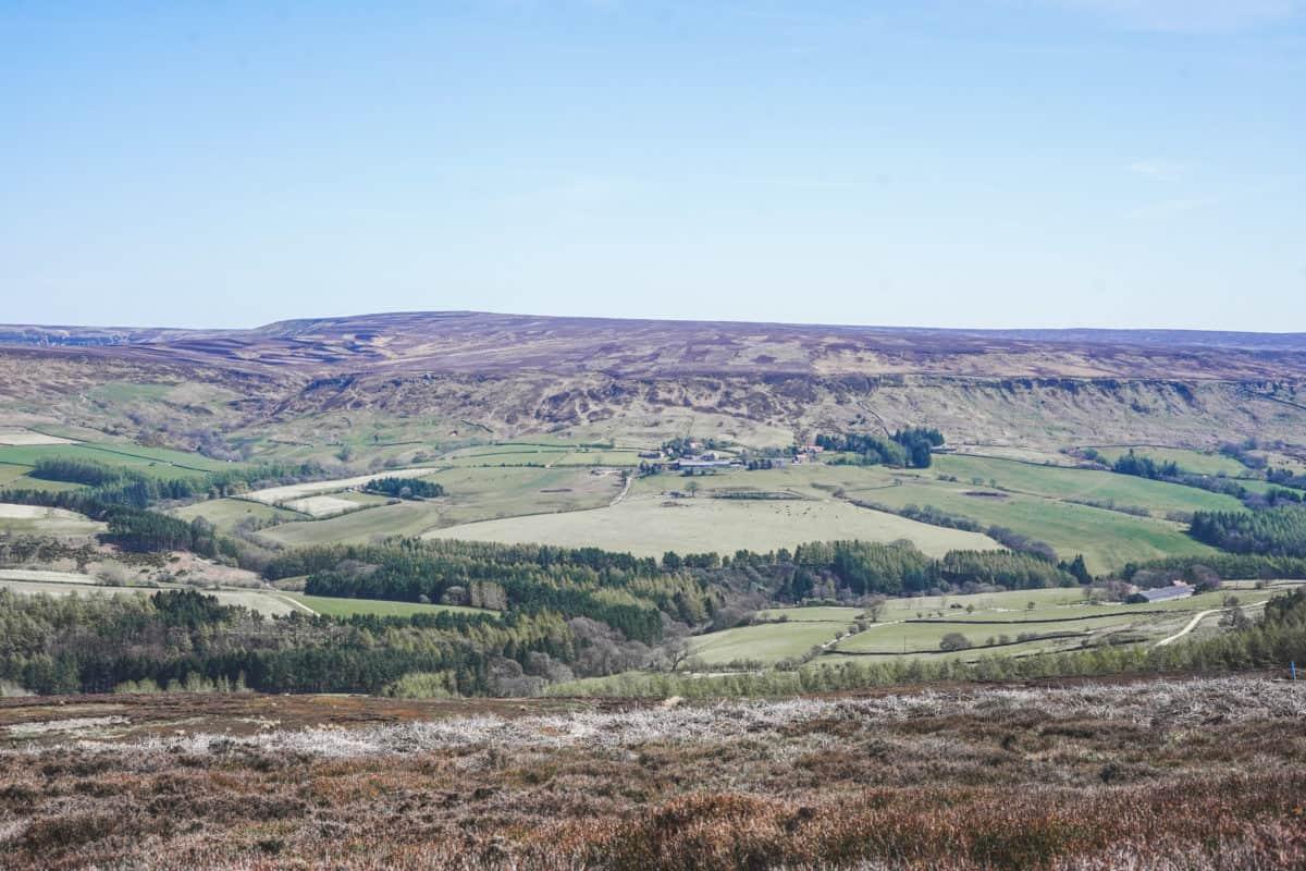 North York Moors Hike