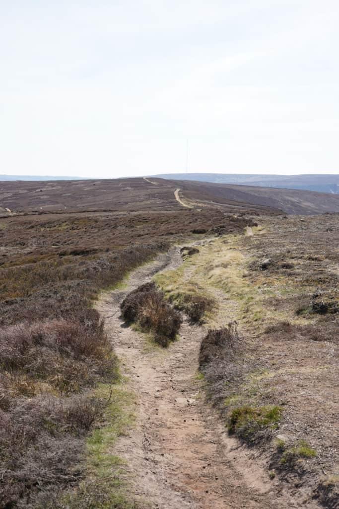 Hiking North York Moors